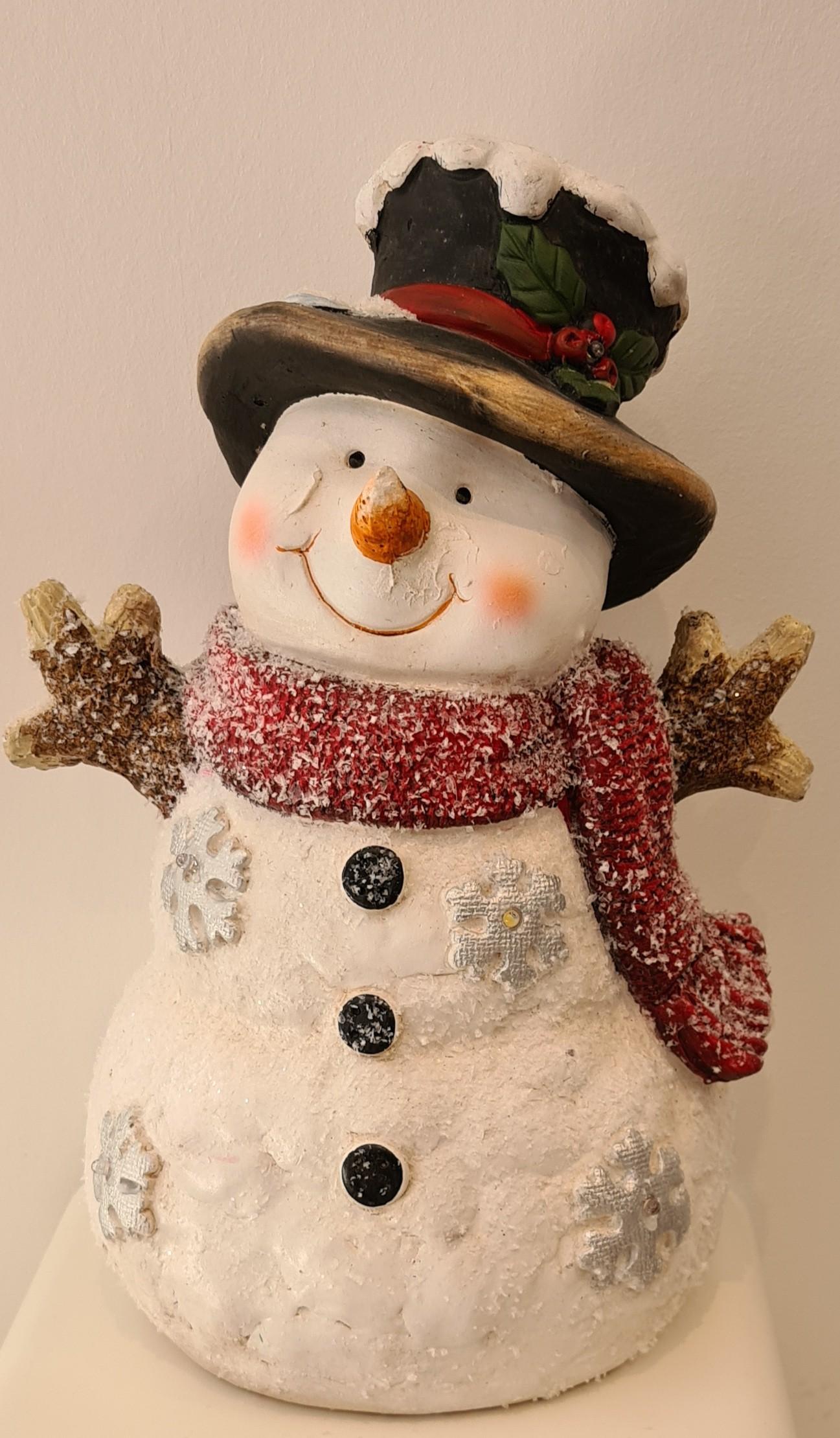 Bonhomme de neige , 5led (40x24cm)